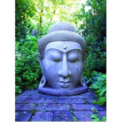 Grand Buddah Head