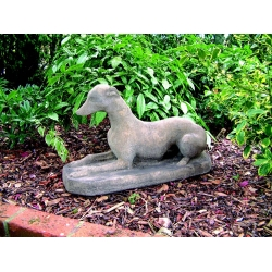 Stone Whippet
